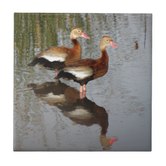 Black-bellied Whistling Duck Small Square Tile