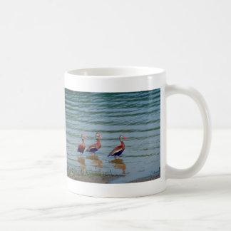 Black-Bellied Whistling Ducks Basic White Mug