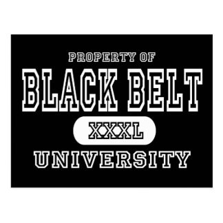 Black Belt University Dark Postcard