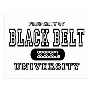 Black Belt University Post Cards