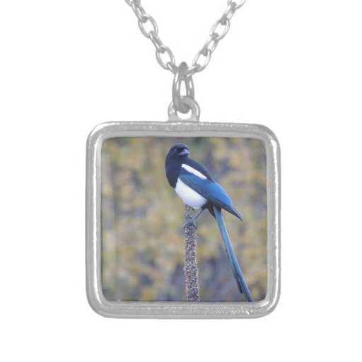 Black Billed Magpie Personalized Necklace