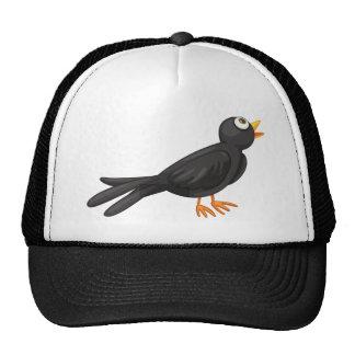Black bird cap