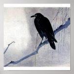 Black bird raven antique art print