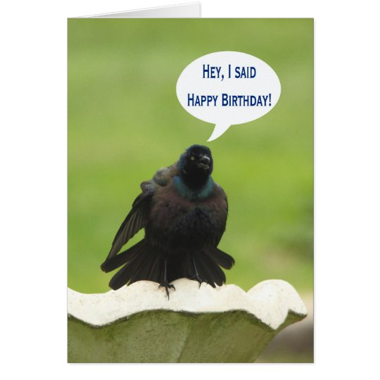 Black bird screaming Happy Birthday for a friend