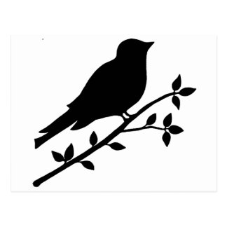 Black Bird Silhouette Postcard