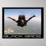 Black birds3 posters