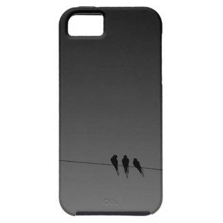 Black Birds on a Wire Night iPhone 5 Case