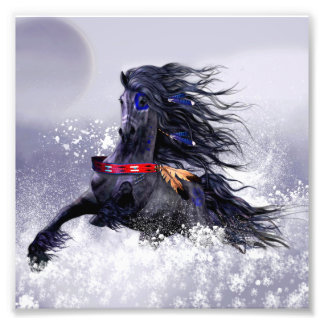 Black Blue Majestic Stallion Indian Horse in Snow Photo Print