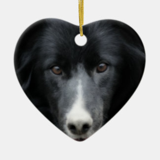 Black Border Collie Face Dog Ornament