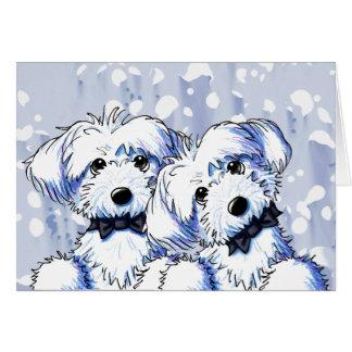 Black Bowtie Maltese Dogs Card