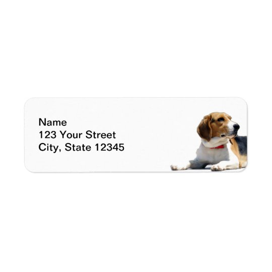 Black Brown and White Beagle Dog Return Address Return Address Label