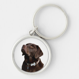 Black Brown Labrador Retriever Puppy Dog Keychain