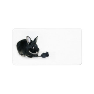 Black Bunny rose Address Label