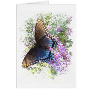 Black butterfly #2 blank card