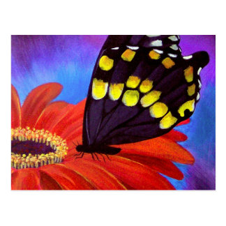 Black Butterfly Daisy Painting - Multi Post Card