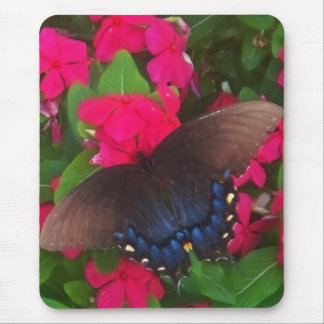 Black Butterfly Mouse Pad