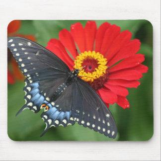 Black Butterfly, Red Zinnia Flower Mousepad