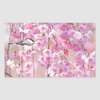 Black Cap Chickadee & Pink Weeping Willow Rectangular Sticker