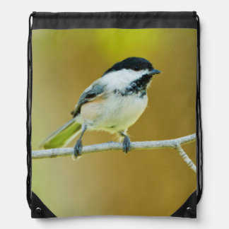 Black-Capped Chickadee Perched In Cottonwood Drawstring Bag