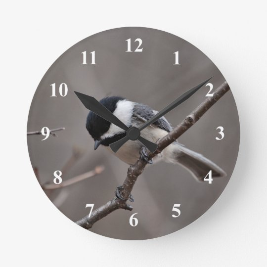 Black Capped Chickadee Round Clock