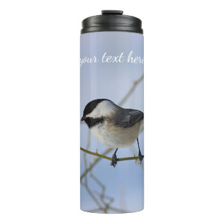 Black-capped chickadee thermal tumbler