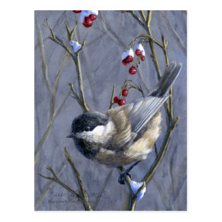 Black Capped Chickadee Winter Red Berries and Snow Postcard