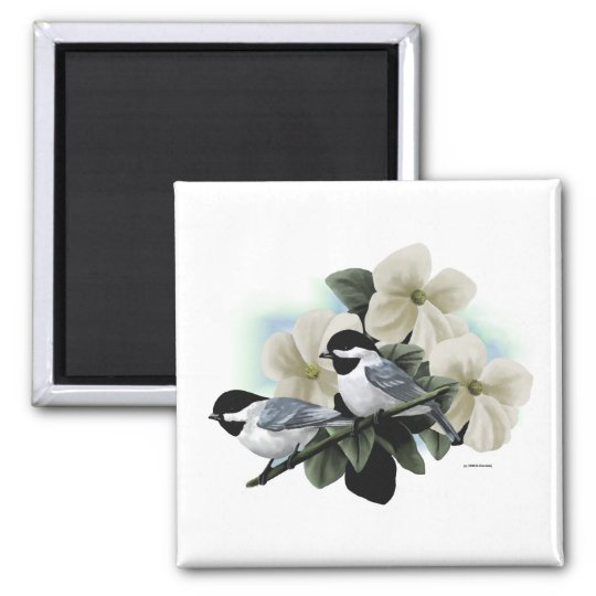 Black Capped Chickadees Square Magnet