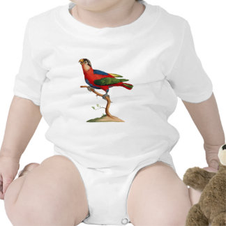 Black-capped Lory - Lorius lory Baby Bodysuit