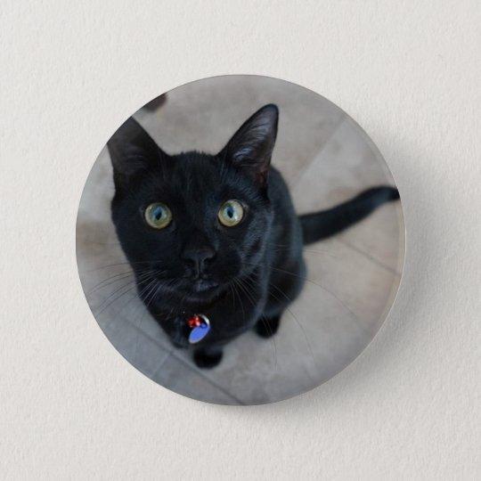 """Black Cat 2 1/4"""" round pin"""