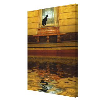 Black Cat above Water Canvas Print