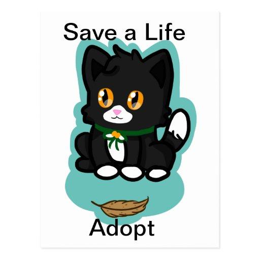 Black Cat Adopt Post Card