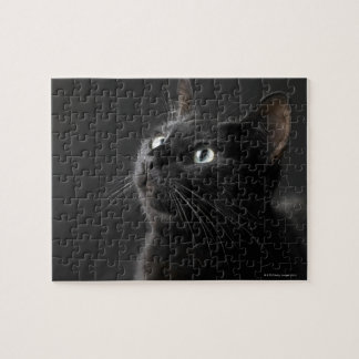Black cat against black background, close-up jigsaw puzzle