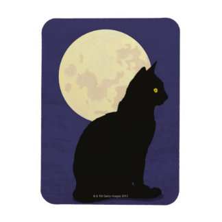 Black Cat and the Moon Magnet