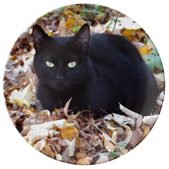 Black cat Autumn leaves Decorative Porcelain Plate