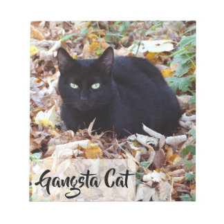 Black cat Autumn leaves Photo  Notepad - 40 pages