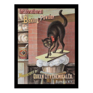 Black Cat Baking Soda Buffalo New York Postcard