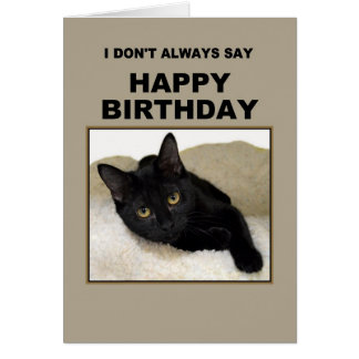 Black Cat Birthday Humor Greeting Card