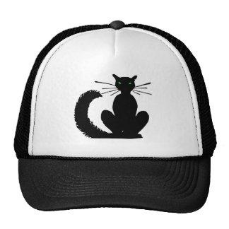 black cat black cat hat