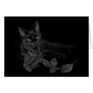Black cat, Black Rose Greeting Card