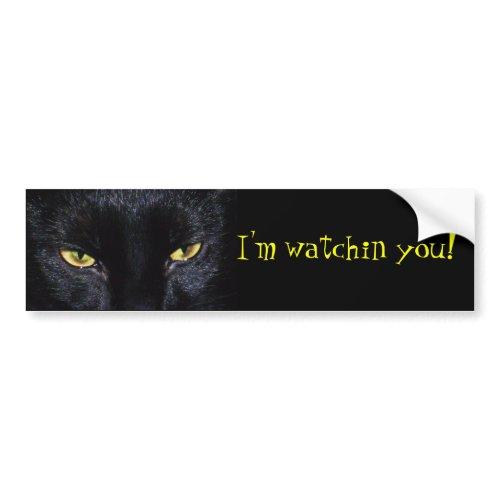 Black Cat Bumper Sticker zazzle_bumpersticker