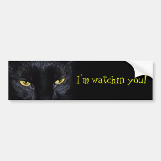 Black Cat Bumper Sticker Car Bumper Sticker