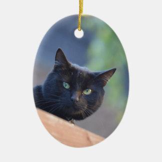 Black cat ceramic oval decoration