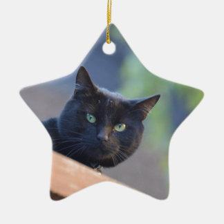 Black cat ceramic star decoration