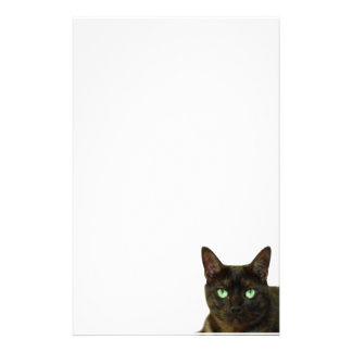 Black cat custom stationery