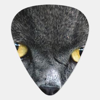 Black Cat Eyes Guitar Pick