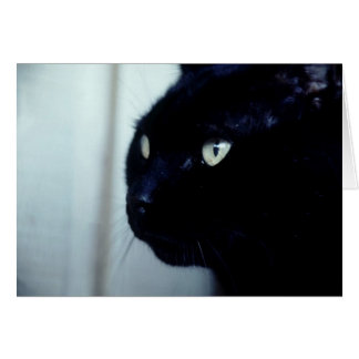 Black Cat Face Greeting Card