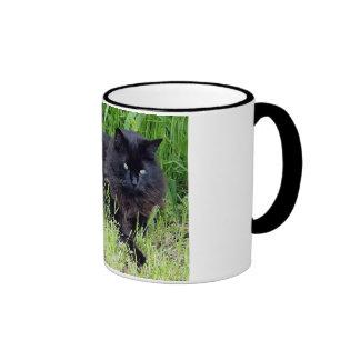 Black cat fluffy long hair feline regal proud coffee mugs