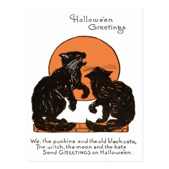 Black Cat Full Moon Orange Black Postcard