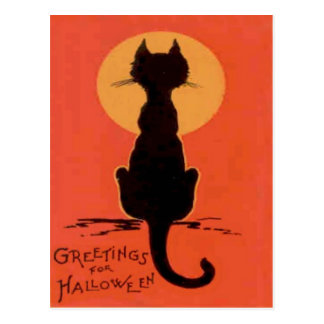 Black Cat Full Moon Yellow Orange Postcard