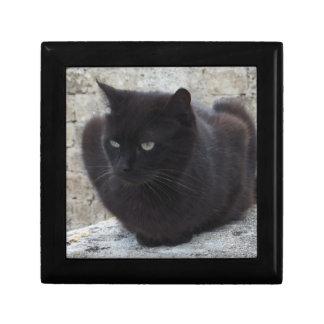 Black Cat gift / jewelry / trinket box